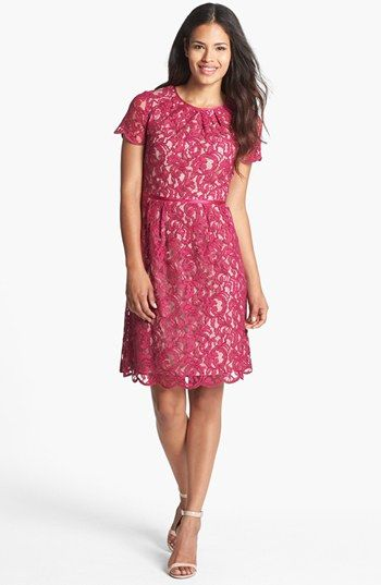 Adrianna Papell Scalloped Lace Dress available at #Nordstrom, in 2 blues!