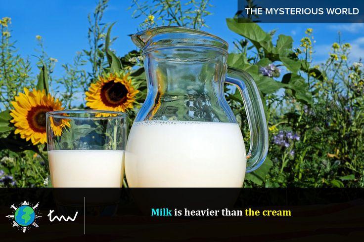 #foods #milk #facts