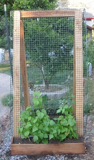 The Thrifty Homesteader: Garden Vertically With a Sandwich Board A-Frame