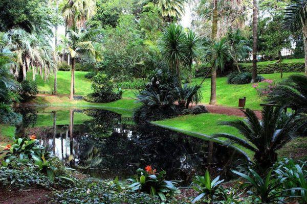 """Você pode ter um jardim simplesmente com a sua cara.Jardins naturais são aqueles que vão acontecendo aos poucos, conforme a mão do dono, conforme as plantas nativas ao local. Conforme sua cara e personalidade. Simplesmente acontecendo. [h2 type=""""2""""..."""