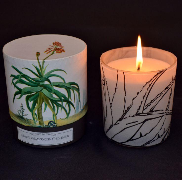 #lunac #candle #aloe #plant #nature #fragrance   Madame Luna   Pinterest