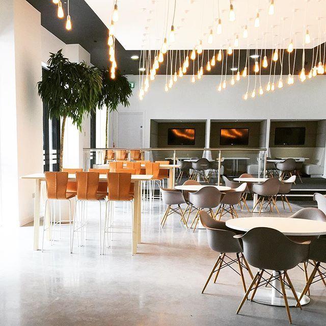 Recently we had the pleasure to deliver new interior solutions to the Adidas office in the UK. We wish them good luck in their new, inspiring workplace!  #europeanfurnituregroup #efgcollaborate #efggraf #efgchat #Scandinaviandesign #interiordesign #officeinterior #officedesign #interiors #furniture #office #workplace #inspiration #design #interiorarchitecture #inredning #kontor #inredningsdesign #interiör #arbetsplats #mötesplats #adidas #möbler #kontorsmöbler