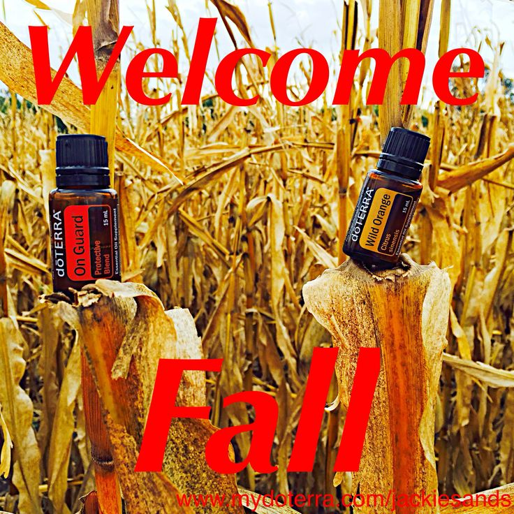 #welcomefall!