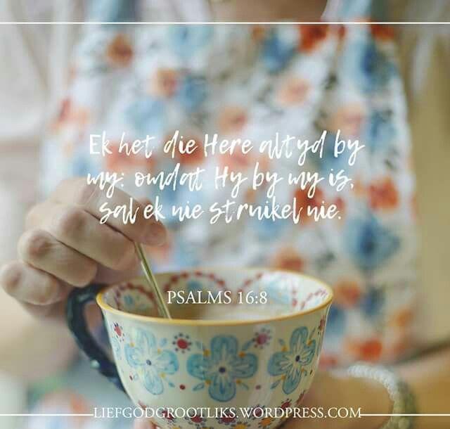 PSALMS 16:8 Ek het die Here altyd by my: omdat Hy by my is, sal ek nie struikel nie.  Wanneer jy alleen voel, weet dat die Here is altyd by jou. #LiefGodGrootliks