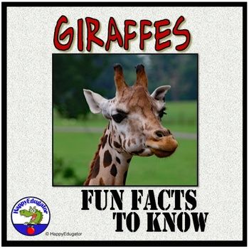Giraffes - Fun Facts About Giraffes PowerPoint. Learn about giraffes! This giraffe PowerPoint has interesting and fun facts about the life of a giraffe. Informational text can be used to introduce or supplement a jungle theme unit or a unit about the zoo, giraffes, or