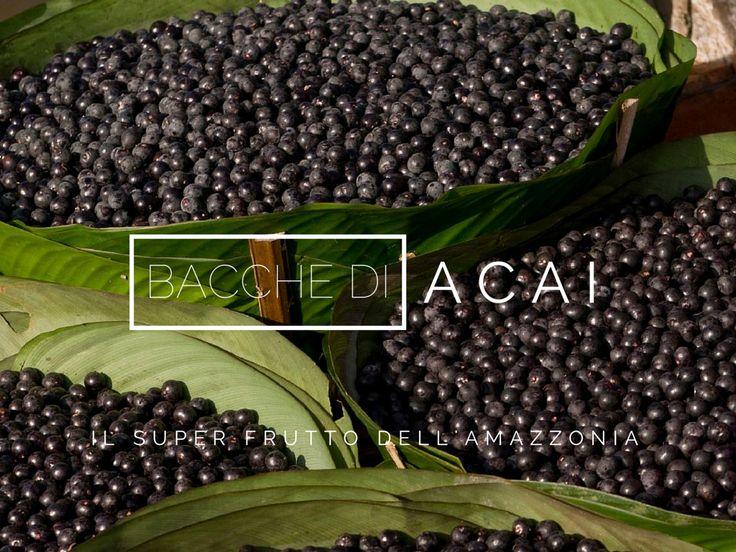 Bacche di Acai | www.bacchedigoji.it