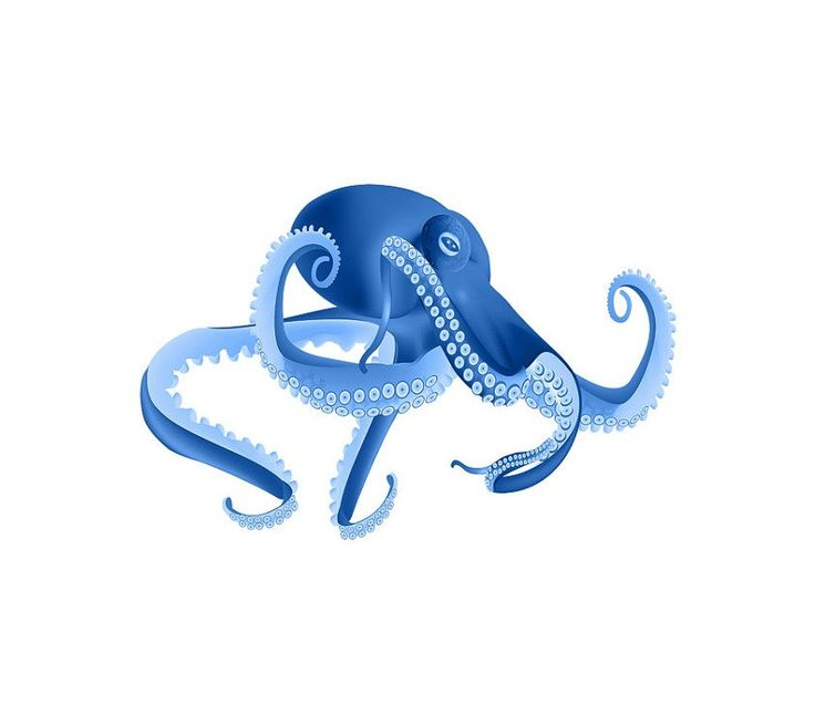 Blue Octopus Image, Water Baby Image, Blue Squid Cutout, Fish Template,Large Poster,Wall Décor, Kids Room, Nursery Room, Nursery Décor by ArtMyWaybyKEBlevins on Etsy