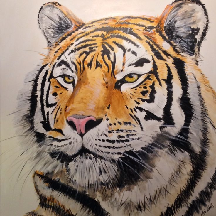 A tiger looking for his new owner! At www.stuiart.com