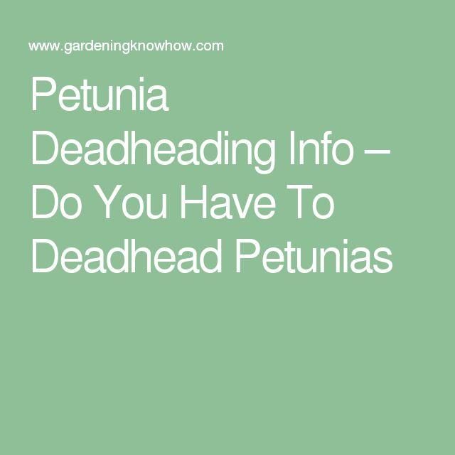 deadhead flowers definition