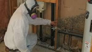 Mold Removal North Miami Beach - If you reside in Miami Beach or surrounding areas and suspect mold in your home then your best course of action is to schedule a mold inspection. Hiring a good mold inspector for your Miami property will give you the best idea as to your risk for developing mold. You would be very shocked in regards to all of the places mold has the prospective to grow.