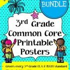 Common Core Posters - Math & ELA I Can Bundle (3rd Grade) - Save a ton of time by buying our pre-made common core posters. These common core po...
