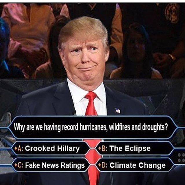 Trump Healthcare Quote: Best 25+ Obamacare Meme Ideas On Pinterest