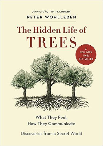 The Hidden Life of Trees: What They Feel, How They Communicate—Discoveries from a Secret World: Peter Wohlleben, Tim Flannery: 9781771642484: Amazon.com: Books