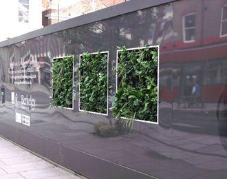 Scotscape Living Hoardings Add Life to Goodman's Fields