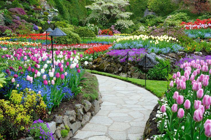 Os jardins botânicos mais bonitos do mundo