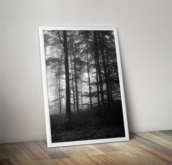 Nature print foggy forest photography prints by BonVoyageStudio