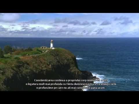 Eckhart Tolle - Despre Atentie