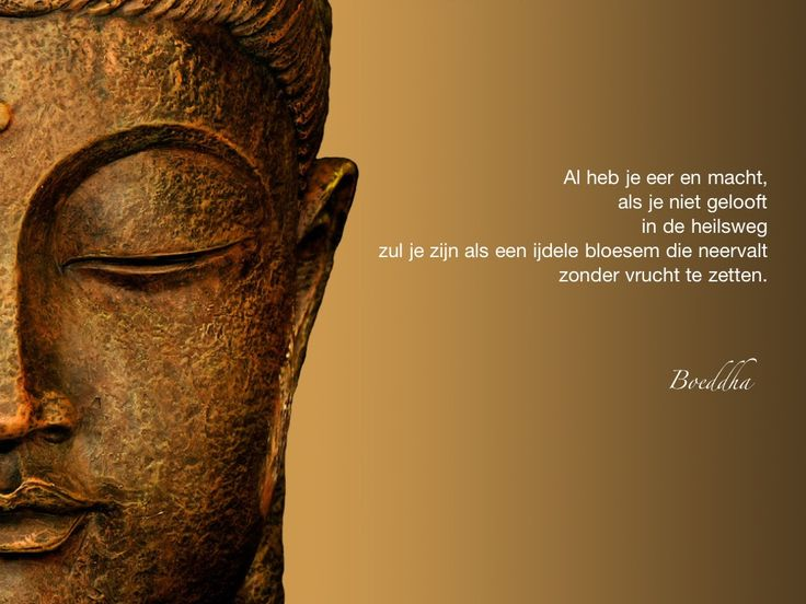 Al heb je eer en macht, als je niet gelooft in de heilsweg zul je zijn als een ijdele bloesem die neervalt zonder vrucht te zetten. / Boeddha