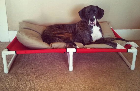 XXL PVC Canvas cot raised bed Great Dane Large Giant breed Custom made dog bed with three cross support bars on Etsy, $149.00