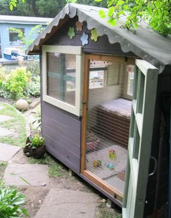 How to turn a shed into a rabbit fun house on Walton Garden Buildings