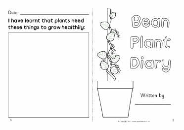 57 Best Plants Free Teaching Resources Images On Pinterest