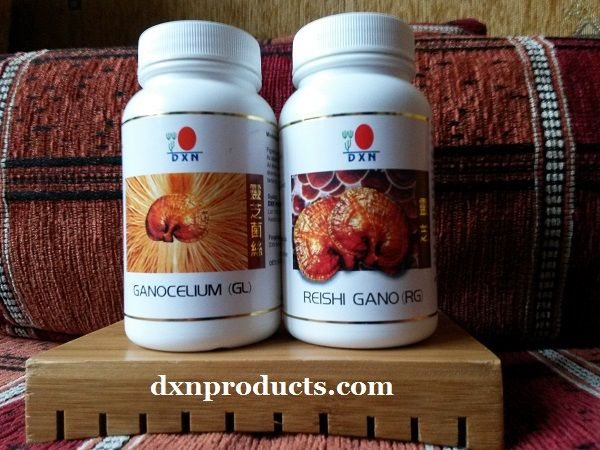 RG and GL detoxífy and re-balance the body. The old Reishi Gano) and the young (Ganocelium) Ganoderma medicinal mushroom capsules rejuvenate and improve stress tolerance as well.