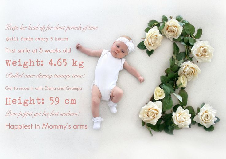 2 Month- monthly baby photo tracking done with flowers. Month by month flower baby photos.