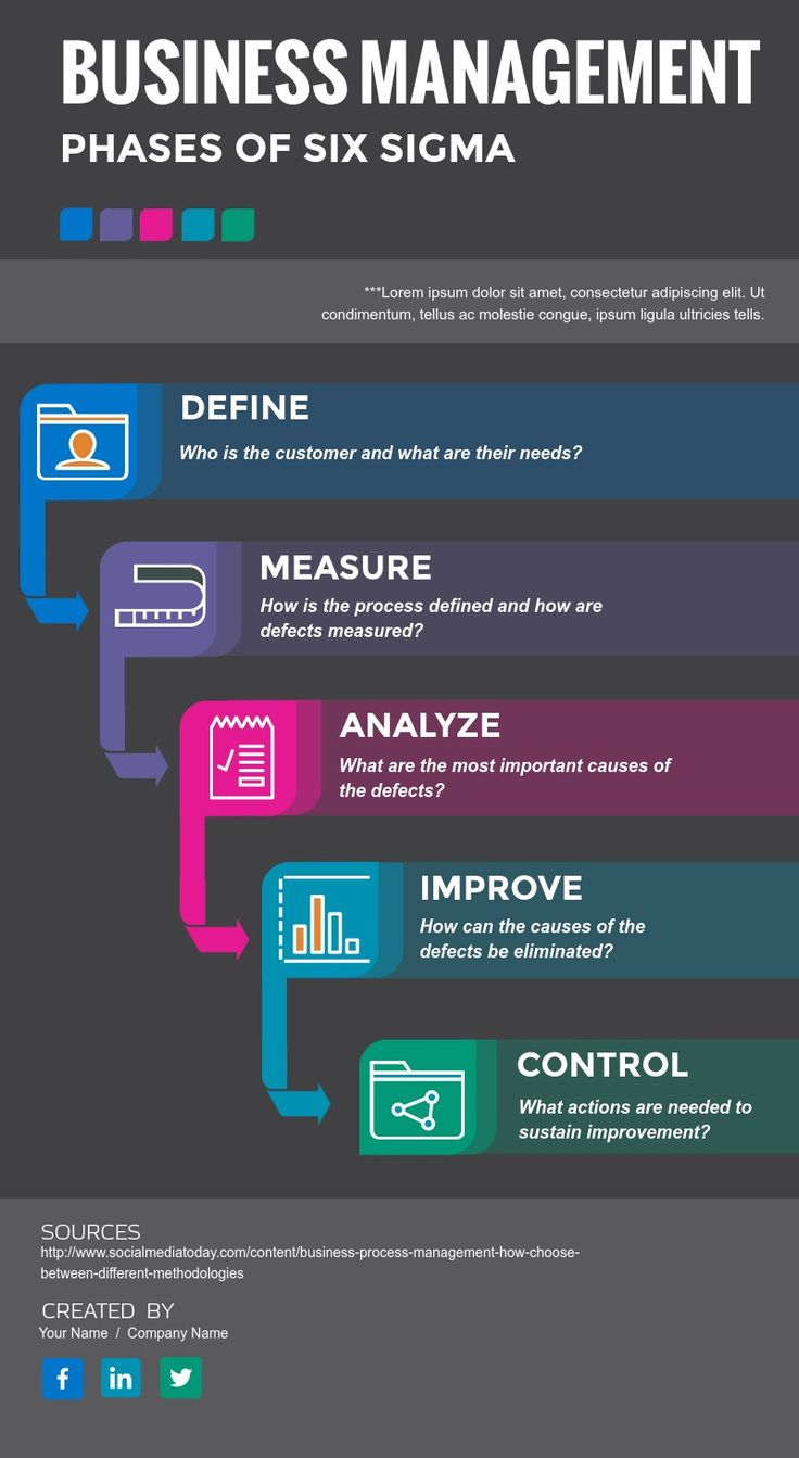 Create a Visme Management infographic, Business