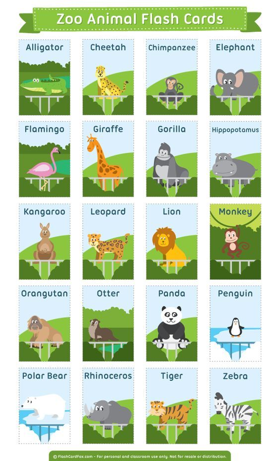 Free printable zoo animal flash cards. Download them in PDF format at http://flashcardfox.com/download/zoo-animal-flash-cards/