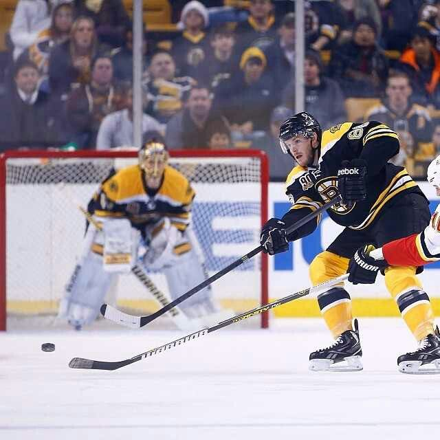 17 Best Images About ♥Boston Bruins♡NHL♥ On Pinterest