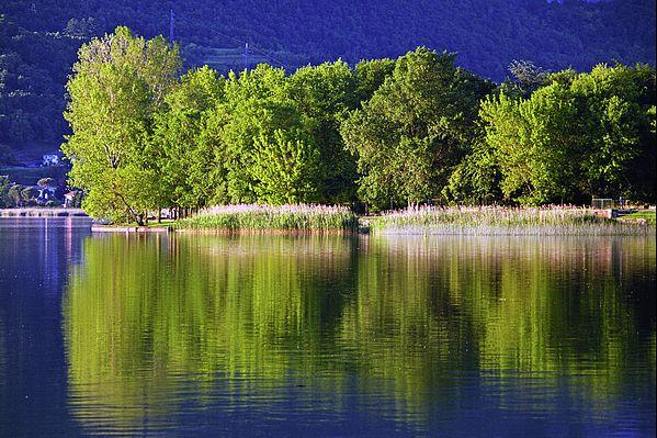 alberi sulla riva del lago illuminati dalla calda luce del sole al tramonto di una sera di primavera che si riflettono nelle calme acque