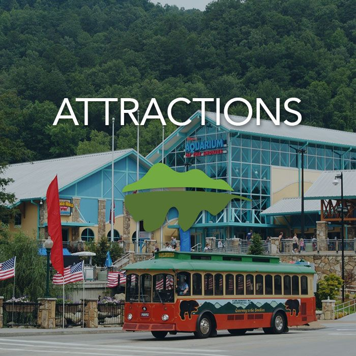 Gatlinburg, Pigeon Forge and Sevierville all offer unique Smoky Mountain attractions that will quickly become family favorites.