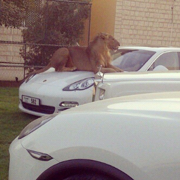 Car park attendants you don't want to mess with. | 35 Things You See Everyday In Dubai
