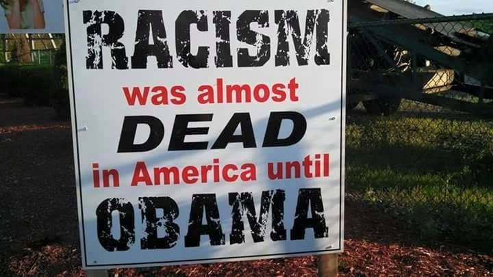 Racism was almost dead in America until Obama. He was elected by a trusting, non-discriminating electorate.