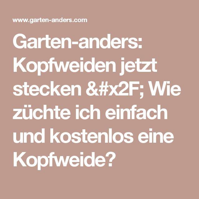 Garten-anders: Kopfweiden jetzt stecken / Wie züchte ich einfach und kostenlos eine Kopfweide?