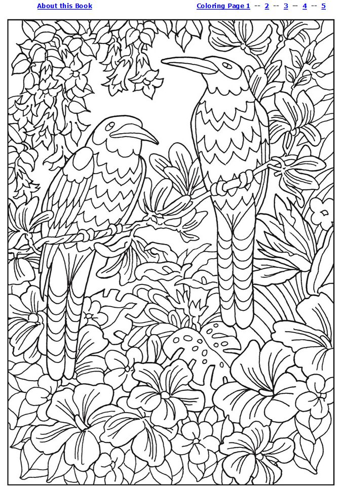 457 best Download - Coloring Pages images on Pinterest | Coloring ...