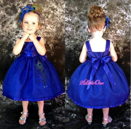 1000  images about royal blue on Pinterest  Royal blue flowers ...