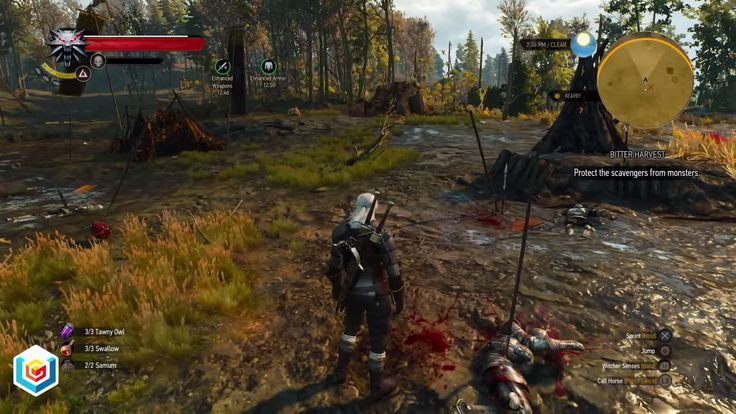 The Witcher 3 Wild Hunt Bitter Harvest Secondary Quest Walkthrough – VGFAQ
