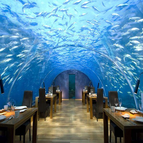 Beautiful Places Underwater: 17 Best Ideas About Underwater Hotel On Pinterest