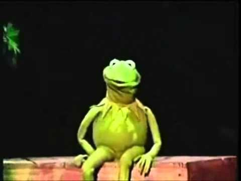 Kermit the Frog screen test