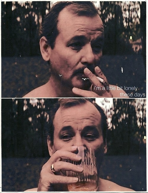 318 Best Images About Bill Murray On Pinterest Life
