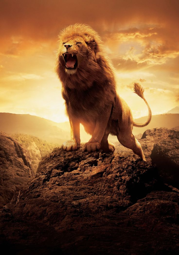 """Promotional art of Aslan roaring for """"The Chronicles of ..."""