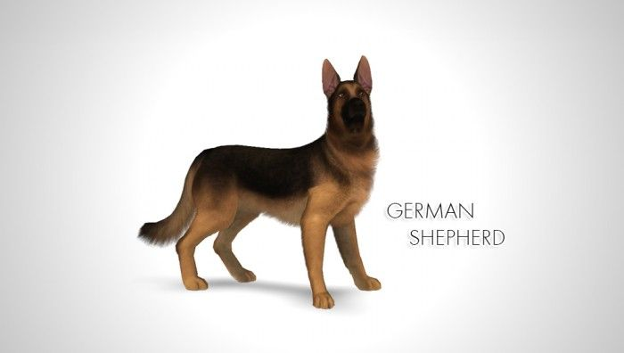 Improved German Shepherd by Morganabanana - Sims 3 Downloads CC Caboodle