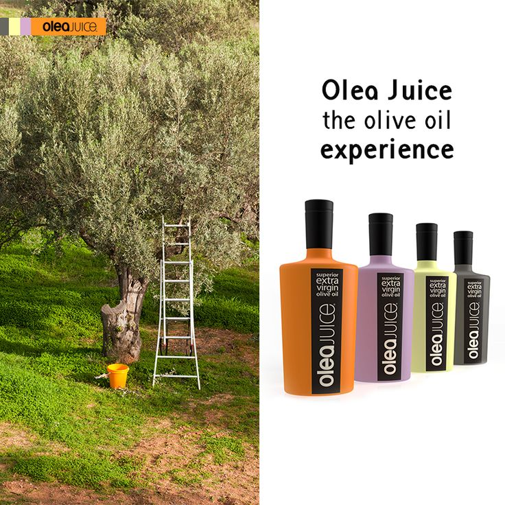 Shop today our limited edition OleaJuice™ bottles and have a new Olive Oil experience! http://oleajuice.com/about-us/the-olea-juice-difference/ #oliveoil #olivetree #experience #bestbuy