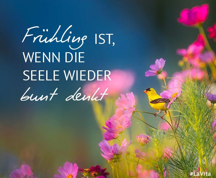 #Frühling ist es , wenn die #Seele wieder bunt ......