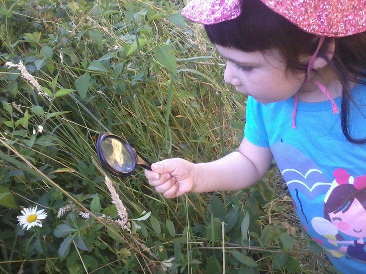 lo mejor es descubrir el mundo con las cosas mas sencillas... y ver en esa carita el asombro por lo que nos rodea..... :] mi hija primera vez saliendo a explorar y ocupando su lupa