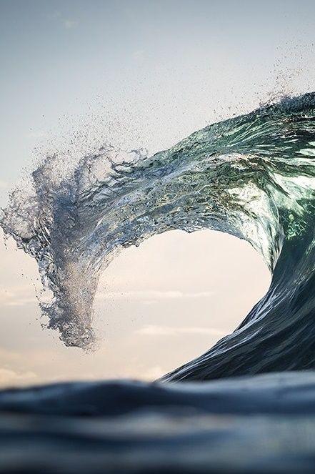 Sea Dragon by Warren Keelan
