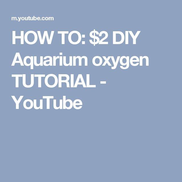 25+ Best Ideas About Diy Aquarium On Pinterest