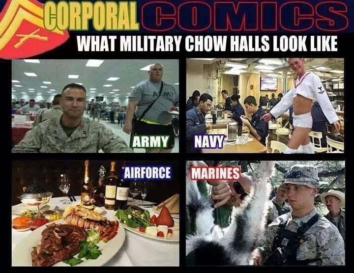 bit of military        humor &;