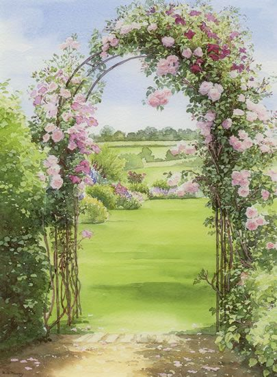 New Dawn Rose Archway Watercolour By Dorothy Pavey In